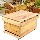 Honey Beehive Box, Hive House 10 Frame in Legno Estremamente Spesso Honey Keeper Beehive B...