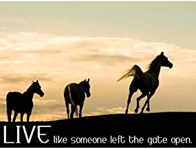 live like someone left the gate open images