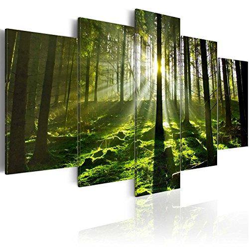 murando - Bilder Waldlandschaft 200x100 cm Vlies Leinwandbild 5 TLG Kunstdruck modern Wandbilder XXL Wanddekoration Design Wand Bild - Natur Sonne Bäume 030213-32