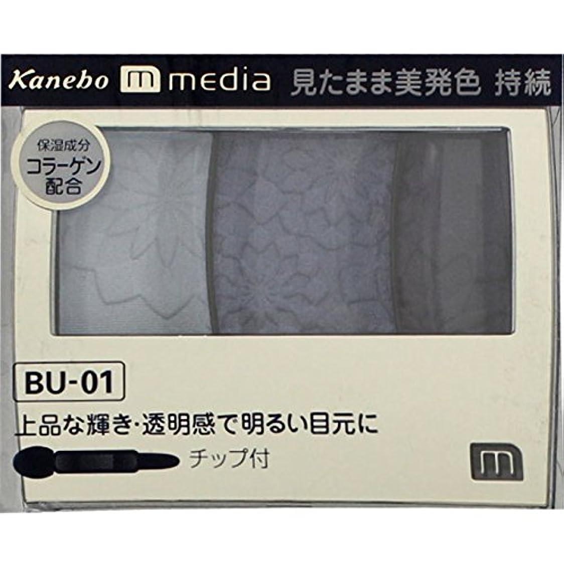 ストレスの多いバージン入浴【カネボウ】 メディア グラデカラーアイシャドウ BU-01
