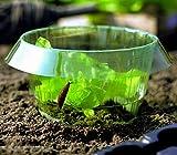 20 anillos de ensalada para ahuyentar caracoles, protección eficaz contra caracoles para sus plantas de ensalada y carbón, anillos protectores para caracoles