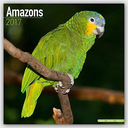 Amazons Calendar 2017