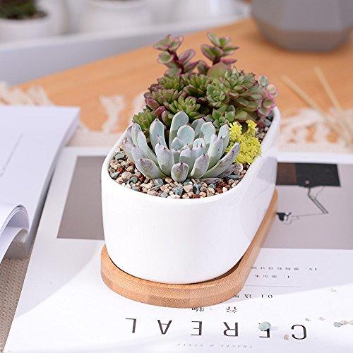 Haihuic Macetas de Interior Titular Moderno de la Planta de jard/ín Jardinera de cer/ámica Blanca con Soporte de Metal para Cactus de Plantas suculentas L, Blanco