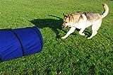 Pet Dog Agility Tunnel Training Dog Cave Exercise Equipment