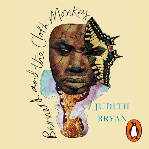 Bernard and the Cloth Monkey cover art