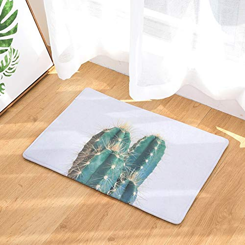 OPLJ Alfombra de Entrada Decorativa de Estilo Tropical con Estampado de piña, Alfombra de Cocina Absorbente, decoración del hogar, Alfombra de Pasillo, Alfombra de baño A12 50x80cm