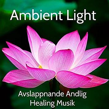 Ambient Light - Avslappnande Andlig Healing Musik för Djup Meditation Sömncykler och Förbättra Koncentration, Naturens Instrumental Ljud