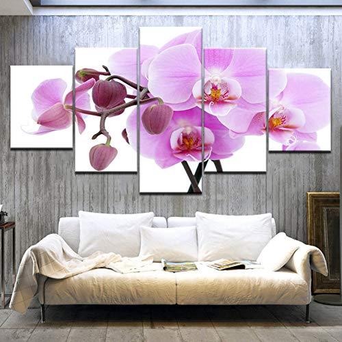 GHTAWXJ 5Panel / Stück Die Orchidee blüht Moderne Wandplakate Druck auf Leinwand Kunstmalerei Für die Dekoration des Wohnzimmers zu Hause