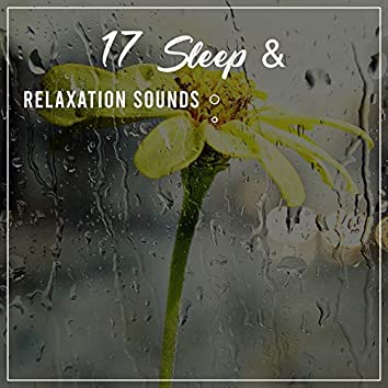 17 Meditation, Sleep & Relaxation Sounds