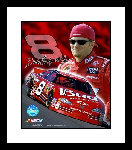 Dale Earnhardt Jr NASCAR Auto Racing 8x10 Photograph Collage