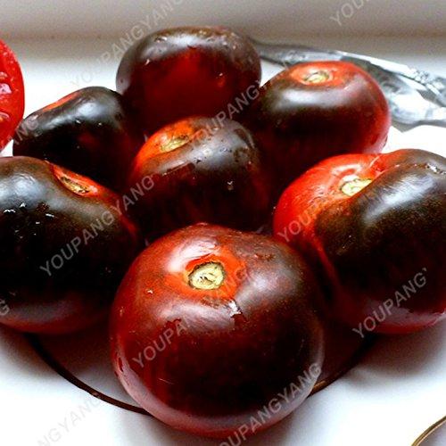 100 graines / paquet Graines rares Noir tomate très savoureux Nutritive bruyères Légumes Graines Bonsai pour jardin plantation Easy Grow Rose