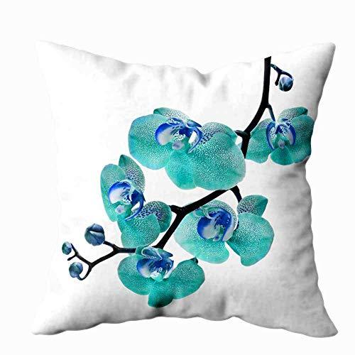 Fundas de almohada Fundas de almohada de granja Fundas de almohada para sofá Patrón de fondo Textura de rayas Verde Aqua Pastel Dos tonos de colores Telón de fondo Rayas verticales Impresión a doble c