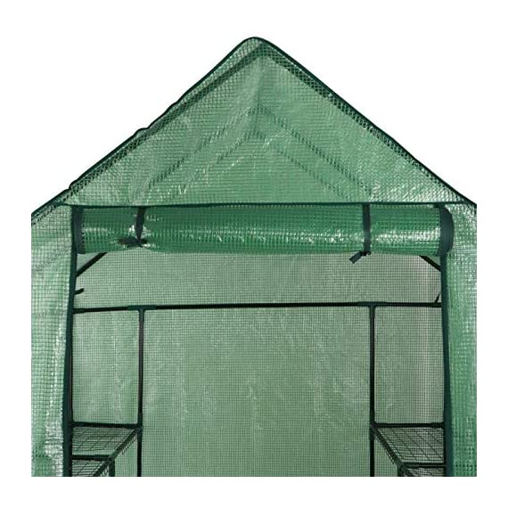 """Mini Walk-in Greenhouse Indoor Outdoor -2 Tier 8 Shelves- Portable Plant Gardening Greenhouse (57L x 57W x 77H Inches… 3 【Strong Construction】This mini walk-in greenhouse is built with high quality metal frame with powder coating, durable bearing net on each layer is strong enough to hold more seed trays, pots and plants growth. The clear waterproof PE cover protects plants from frost or pests while allowing nourishing sunlight to pass through. 【Indoor Outdoor Greenhouse】Waterproof and UV protection, ideal growing environment , can be used indoor and outdoor at all seasons. Perfect for protecting young plants or extending the plant growing season. 【Portable & Easy Setup】Overall Dimensions: 57""""L x 57""""W x 77""""H, Perfect Size for Easy Moving to Indoor or Outdoors. Easy to assemble, no tools required. Enjoying a lot of fun of the flowers and plants in your leisure time!"""