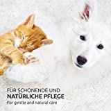 AniForte Ohrmilbenöl 20 ml bei Ohrmilben- Naturprodukt für Hunde, Katzen und andere Haustiere - 6
