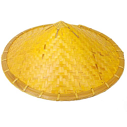 Chinese Bamboo Farmer Rice Hat Oriental Asian Japanese Garden Fish...