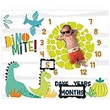 Dinosaur Baby Stuff Month Milestone Blanket for Newborn Photo Taken - Baby Age Blanket