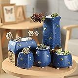 ZHANGMX Interior Flower Pots Golden Star y Blue Colour Flower Pot Succulent Cactus Pot Plant Garden Ceramic Flower Pot Outdoor Balcony Home Decoration 10.7x7.4cm B