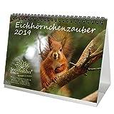 Eichhörnchenzauber 2019 · DIN A5 · Premium Tischkalender/Kalender · Eichhörnchen · Wald · Natur · Tier · Wildnis · Set mit 1 Weihnachtskarte · Edition Seelenzauber