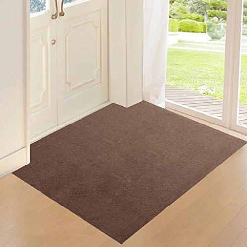 ZWL Matratze Eintrag Tür Matratze Tür Eingangshalle Matratze Halle Teppich Anti -...