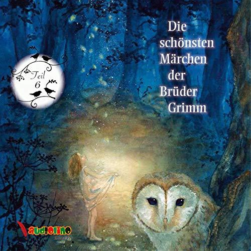 Die schönsten Märchen der Brüder Grimm 6 Titelbild