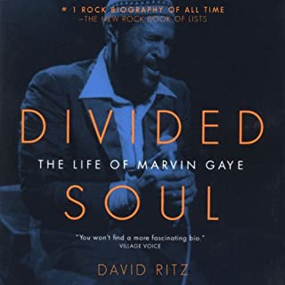 Divided Soul cover art