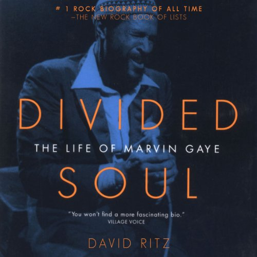 Divided Soul audiobook cover art