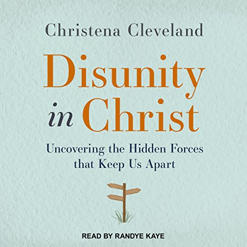 Disunity in Christ audiobook cover art