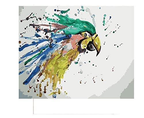 Decoración del hogar pintura pintura digital Cuadro pintura loro colorido Lucky Bird By Numbers DIY pintura para colorear lienzo decoración del hogar pintura 40x50cm(con marco)