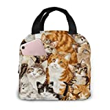 BLUBLU Cute Cat Portable Lunch Bag Insulated Cooler Tote Box for Travel/Picnic/Work