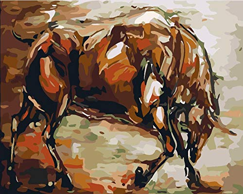 renqiancun Verf door Numbers kits voor Volwassenen Beginner DIY Schilderen 16 * 20 inch Leuke paard dier Canvas Art Home Decoratie