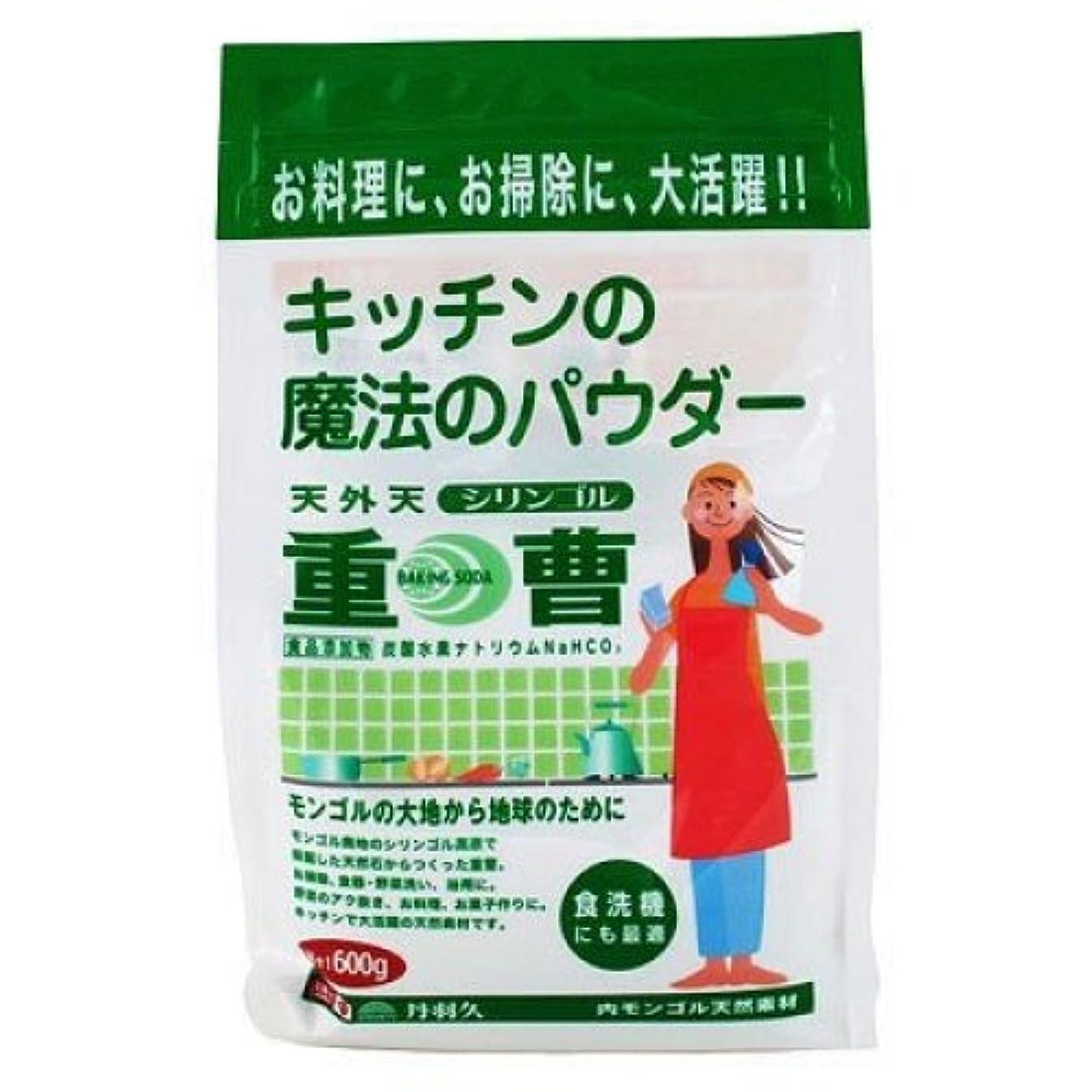 レモンブラシ仮説天外天シリンゴル重曹 600G