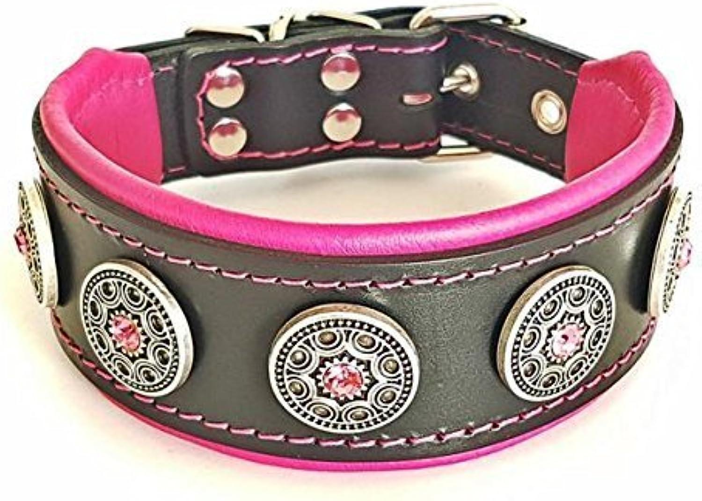 Bestia  Bijou studded leather dog collar. 2 inch wide. Handmade in Europe