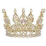 SHUXIA Boda nupcial princesa diadema diamantes de imitación cristal perla corona sombreros guirnaldas artificiales para decoracion coronas de quinceañeras de plata (plata, Talla única)
