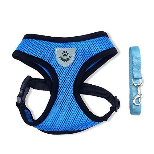 BLEVET Arnés Perro Gato Ajustable Respirante Pequeña Chaleco para Cachorros, Perros Pequeños y Gatos MZ046 (M, Blue)