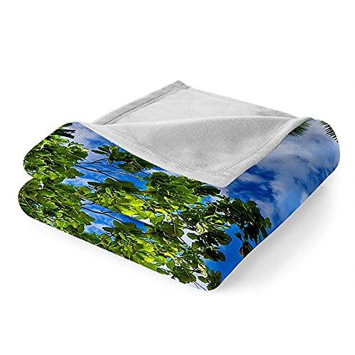 Mantas para Sofa Manta Microfibra de Franela Suave Cálido Batamanta Mujer Manta Pequeña para Cama o Sofá 150x200 cm Árbol de Coco de Playa