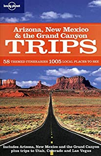 Arizona, New Mexico and the Grand Canyon Trips (Lonely Planet Country & Regional Guides) [Idioma Inglés]: 58 Themes itiner...
