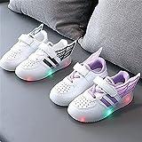 Tulent Niños Unisex DIRIGIÓ Light up Entrenadores niños Zapatillas Individuales Zapatos niño niño pequeño Zapatos Casuales Coloridos Zapatos Zapatos de Correr Zapatos (Color : Black, Size : 22)