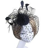 Tinksky Retro Style Bird Cage Mesh Bridal Face Veil Feather Fascinator Hair Clip Wedding Valentine's Day Hair Accessory Black OS