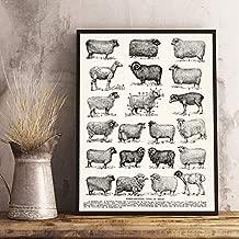 liwendi Sheep Breed Retro Poster Prints Farmhouse Wall Art Sheep Canvas Painting Hut Farmhouse Decoration Farmer Gift 42 60Cm