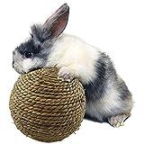 Reefa Balle/Jouet pour Lapin Nain Hamster