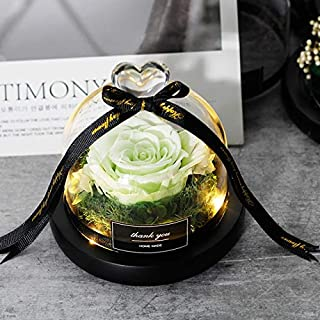 ガラスドーム誕生日ギフトで母の日のプレゼントザ・美女と野獣バラバレンタインデーのギフトの永遠のバラ付きナイトライト HYFJP (Color : グレー, Size : フリー)