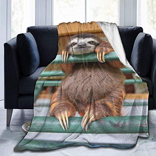 HGGZJUA Decke Wohn Kuscheldecken 3D Faultier Touch Warm Flanell Fleece Decken Überwürfe Für Sofa Flauschige Decken Bettüberwürfe Für Schlafzimmer,Couch,Reisen,Kinder,Schlafzimmerzubehör 80X60 Inches