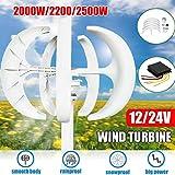 zhangchao 12V, 2000W Wind Turbine Generator Lantern 5-Blade Motor Kit Vertical Axis,...