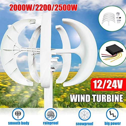 zhangchao 12V, 2000W Wind Turbine Generator Lantern 5-Blade Motor Kit Vertical Axis, with Home Street Light Controller