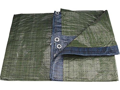 Extol Craft–Telone di copertura in PE, impermeabile, Standard 11112