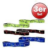 Sveltus Lot de bandes élastiques avec affiche d'exercices (français non garanti), bande de résistance indéchirable, lavable, pour cross training et musculation., Jaune/noir/bleu.