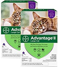 Bayer Advantage II Flea Prevention for Large Cats - 6 Doses, 6 Months Supply - 2 Pack Bundle