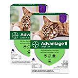 Bayer Advantage II Flea Prevention for Large Cats 6 Doses, 6 Months Supply 2 Pack Bundle