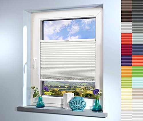 Sun World Plissee nach Maß, deutsche Wertarbeit, hochqualitative Wertarbeit, für Fenster und Türen, alle Größen, Maßanfertigung, Jalousie, Faltrollo (Farbe: Off White, Höhe: 20-80cm, Breite: 20-50cm)