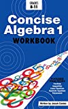 Concise Algebra 1: Learn Algebra 1 Basics in This Workbook Style Textbook   Including Detailed Lessons and Over 50 Practice Problems with Solutions